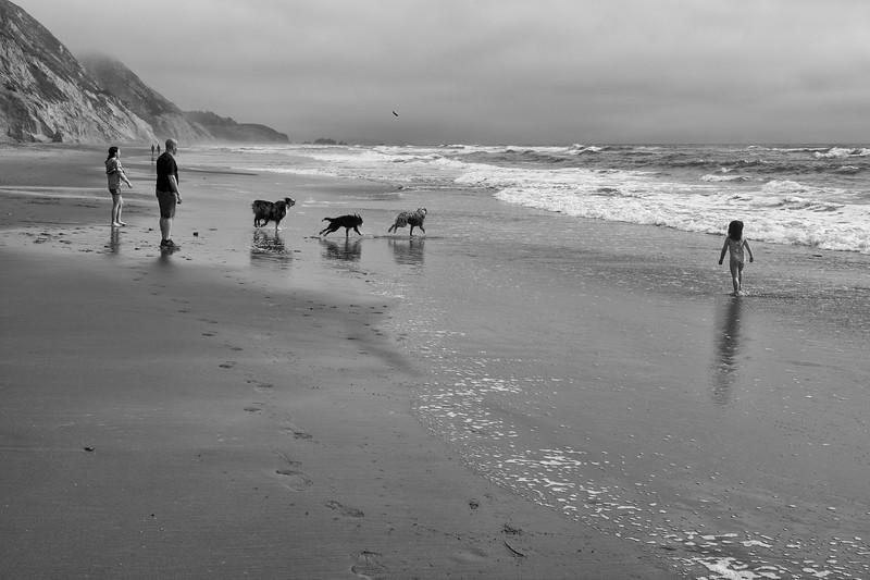 ocean beach quarantine 1160145-8-20.jpg
