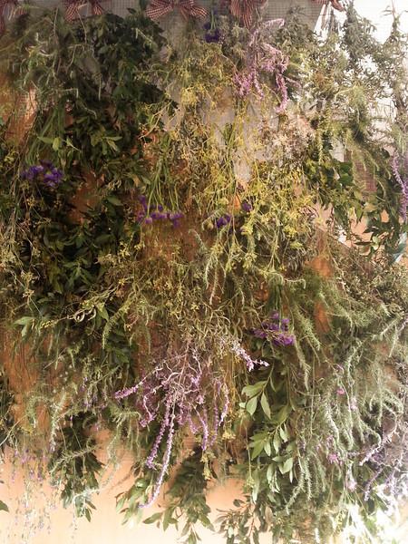 Ratafia herbs.jpg