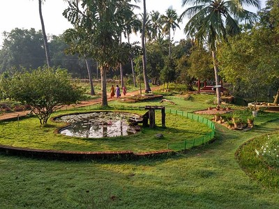 Sri Aurobindo Ashram Gardens - Сады Ашрама Шри Ауробиндо