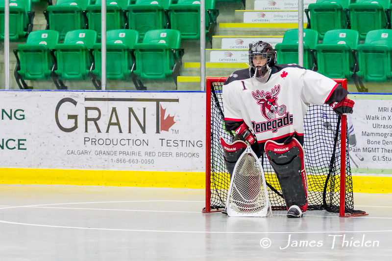 Game, May 11, 2014 Okotoks Ice vs Red Deer Renegades