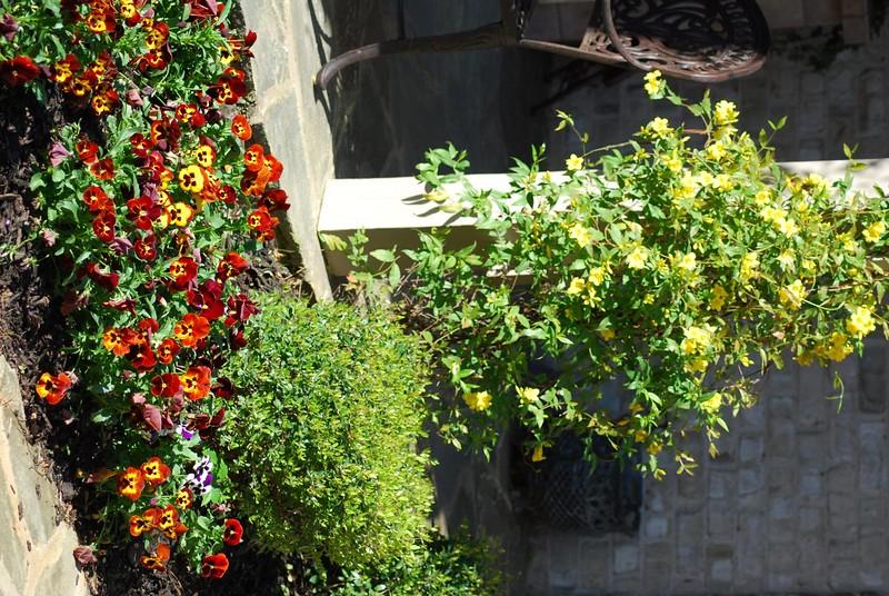 April_2008_063.jpg