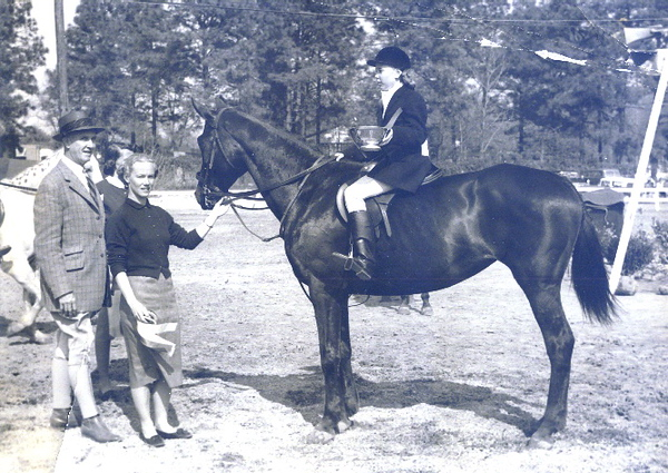 Horse Siboney.jpg