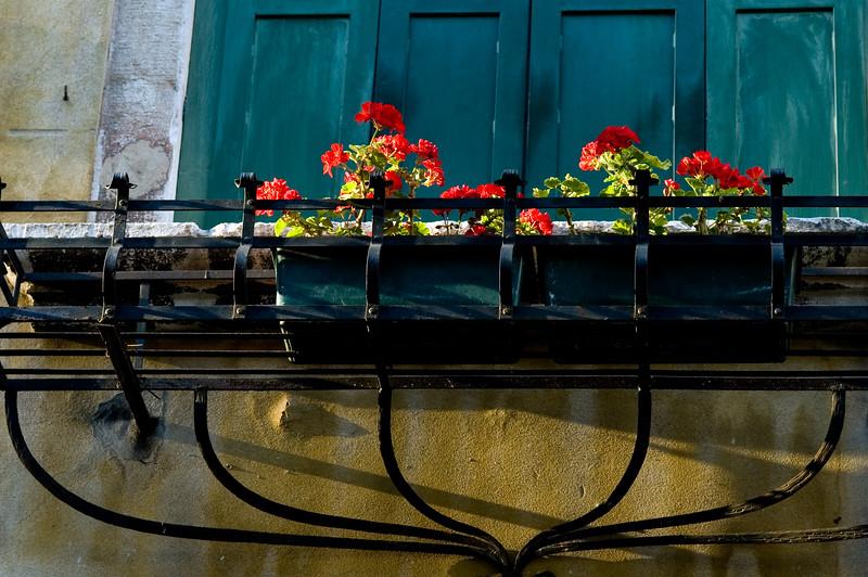 Flowerpot with red geraniums, Cannaregio quarter, Venice, Italy