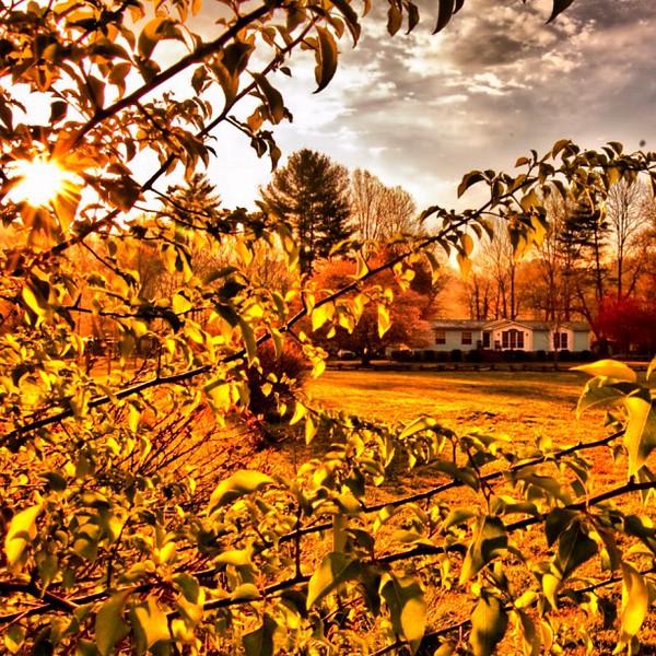 2011-10-15_1318678344.jpg