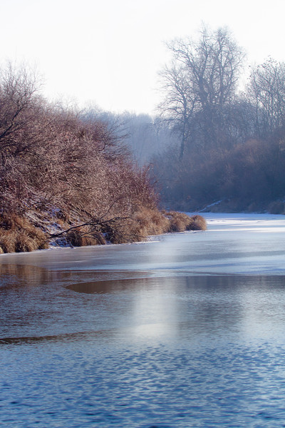 The Danube Wetlands National Park in Winter