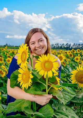 Dana~~~ sunflowers