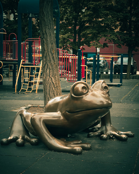 142 (5-31frog in the park -3.jpg