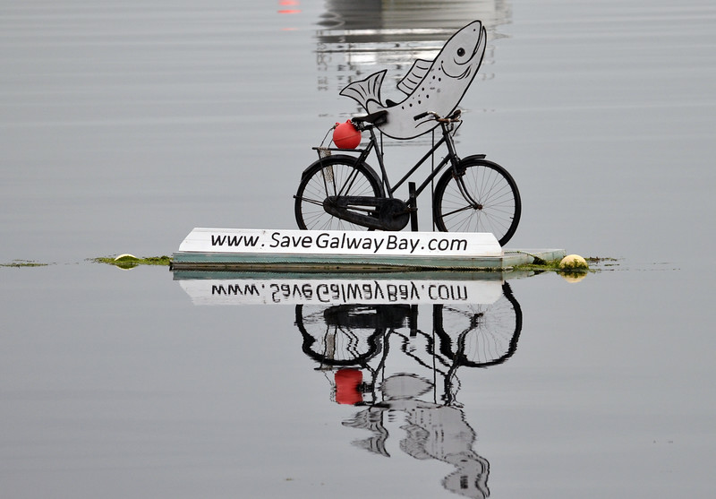 a fish on a bicycle.jpg