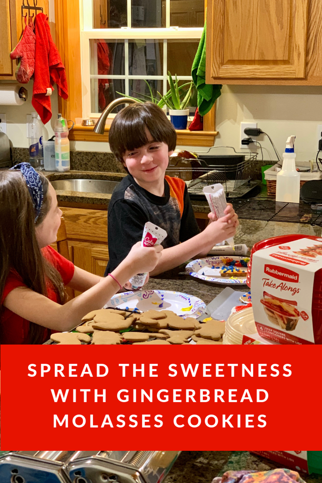 Tis the season to make Gingerbread Molasses Cookies and spread the sweetness with loved ones #ad #takealongsholiday #spreadthesweetness #walmart @rubbermaid