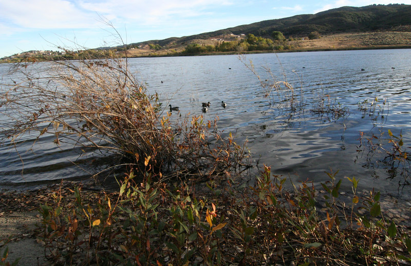 Lake Elizabeth 060-1.jpg