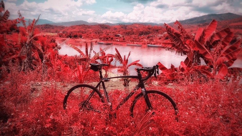 Cycling by the Mekoing, Thailand - iPhone 7 with Filmic firstlight app in infrared mode