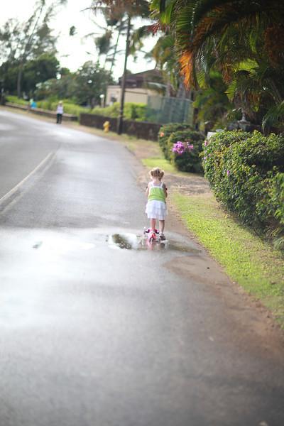 Kauai_D4_AM 040.jpg