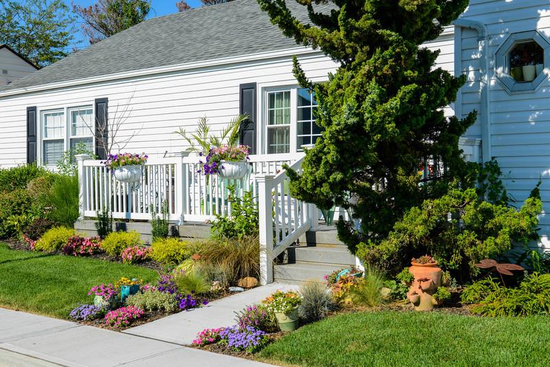 House and Garden-002.jpg