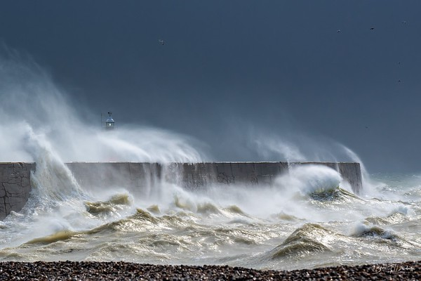 Newhaven Storms