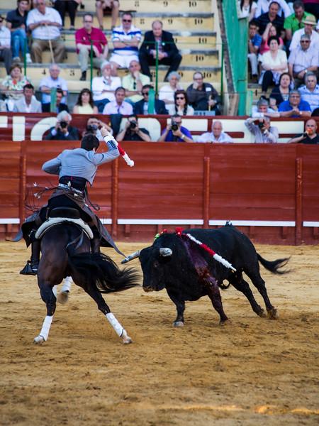 Bullfighting H29.jpg