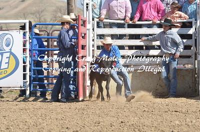Chute Dogging 05-03-15