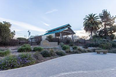 Fullerton Arboretum 1.19.2014