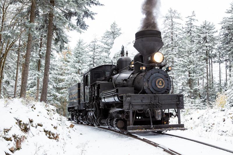 WVWS Cass Scenic RR Bald Knob Snow-8414.jpg
