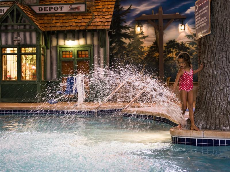 Country_Springs_Waterpark_Kennel-4441.jpg