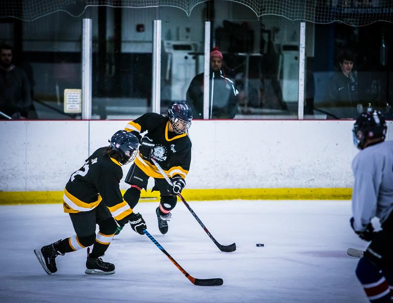 Bruins2-375.jpg