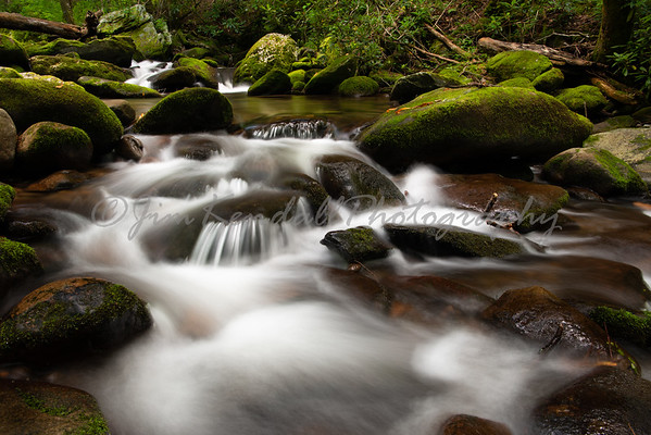 Great Smoky Mountains -2020