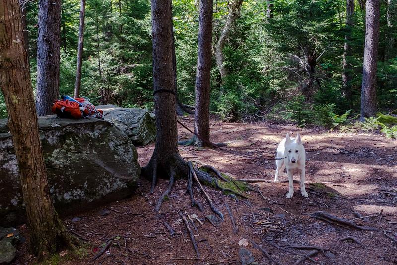 Catskills-12.jpg