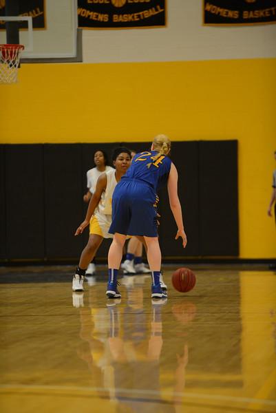 20140125_MCC Basketball_0155.JPG