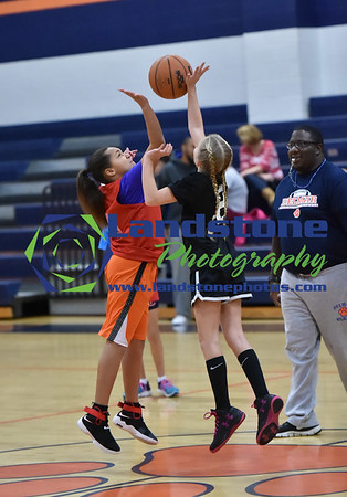 Delmar Youth League Basketball 01/14/17