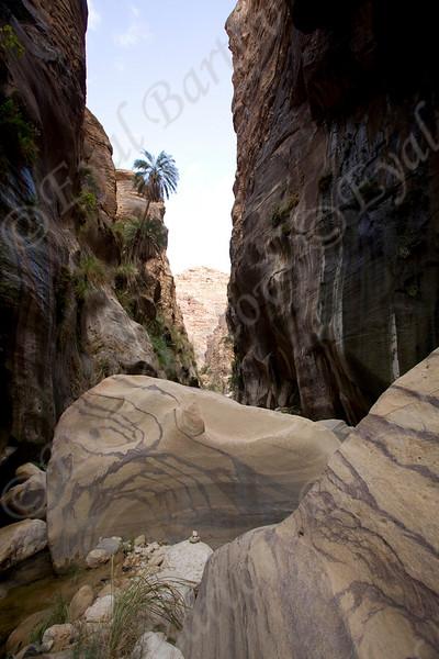IMG_1056 Zered wadi- Jordan.jpg