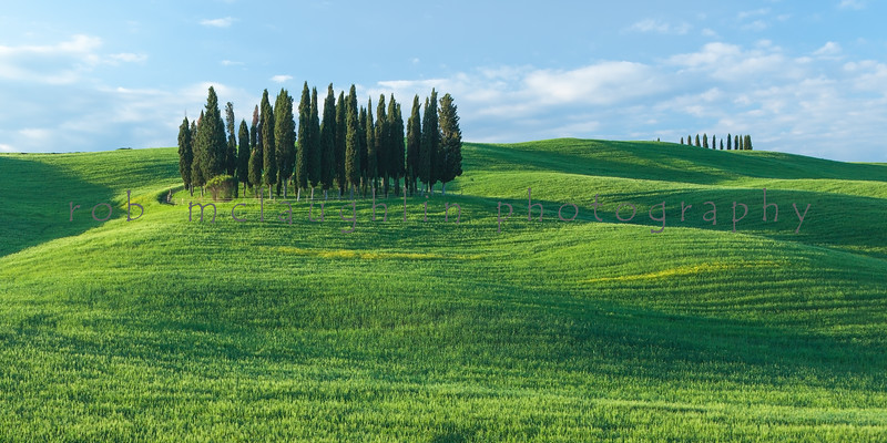 Cypress and Shadows , San Quirico d'Orcia , Tuscany