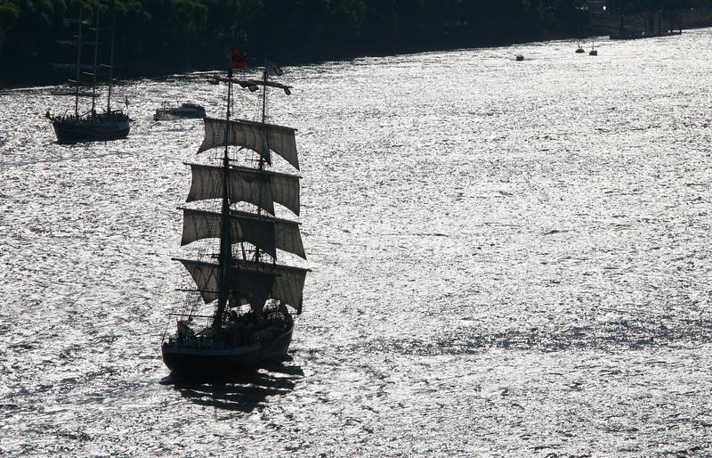 Segelschiff auf der Elbe im Gegenlicht Hamburg
