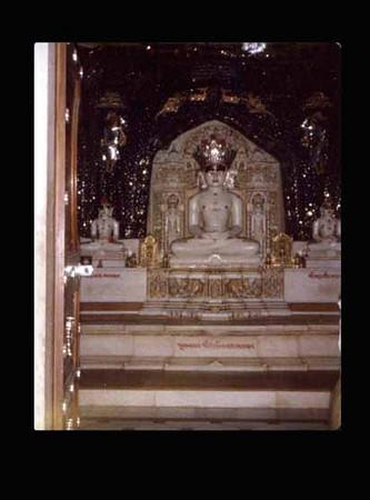 Ancient Yogi S.S.Shankar