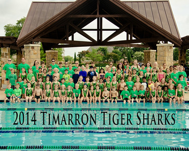 Timarron Tiger Sharks 2014
