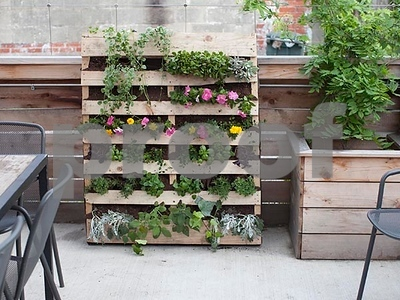 you-can-make-a-vertical-garden-from-a-wooden-shipping-pallet