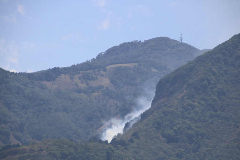Forest Fire on a mountain
