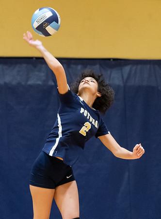High School Volleyball: Gwynn Park vs. Potomac