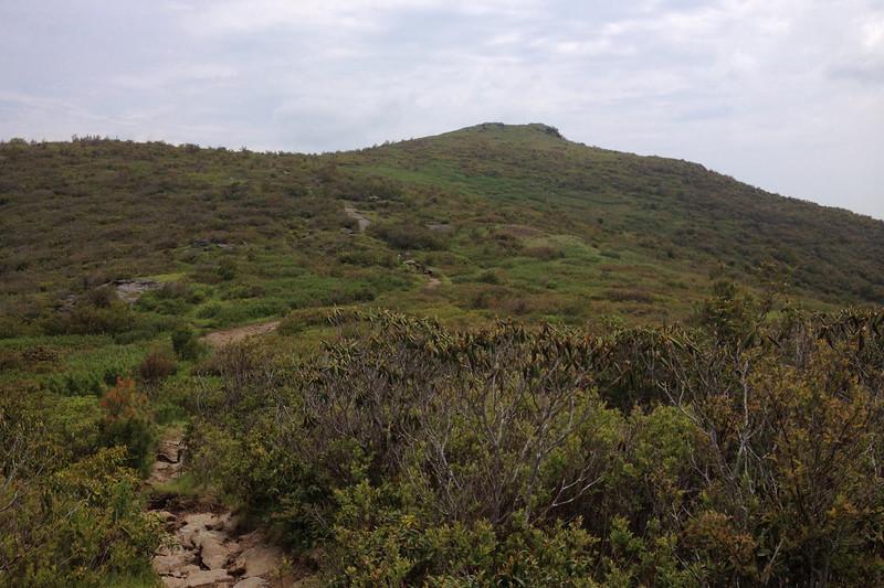 Art Loeb Trail (5,880')