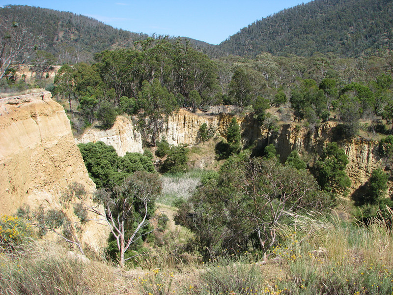 Omeo - Oriental Claims - Five  minutes drive from Omeo
