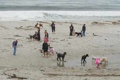 5-Beach play