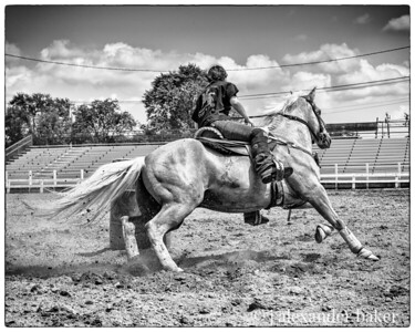 Gymkhana in Black and White