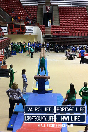 VHS Gymnastics 2013 State Championship