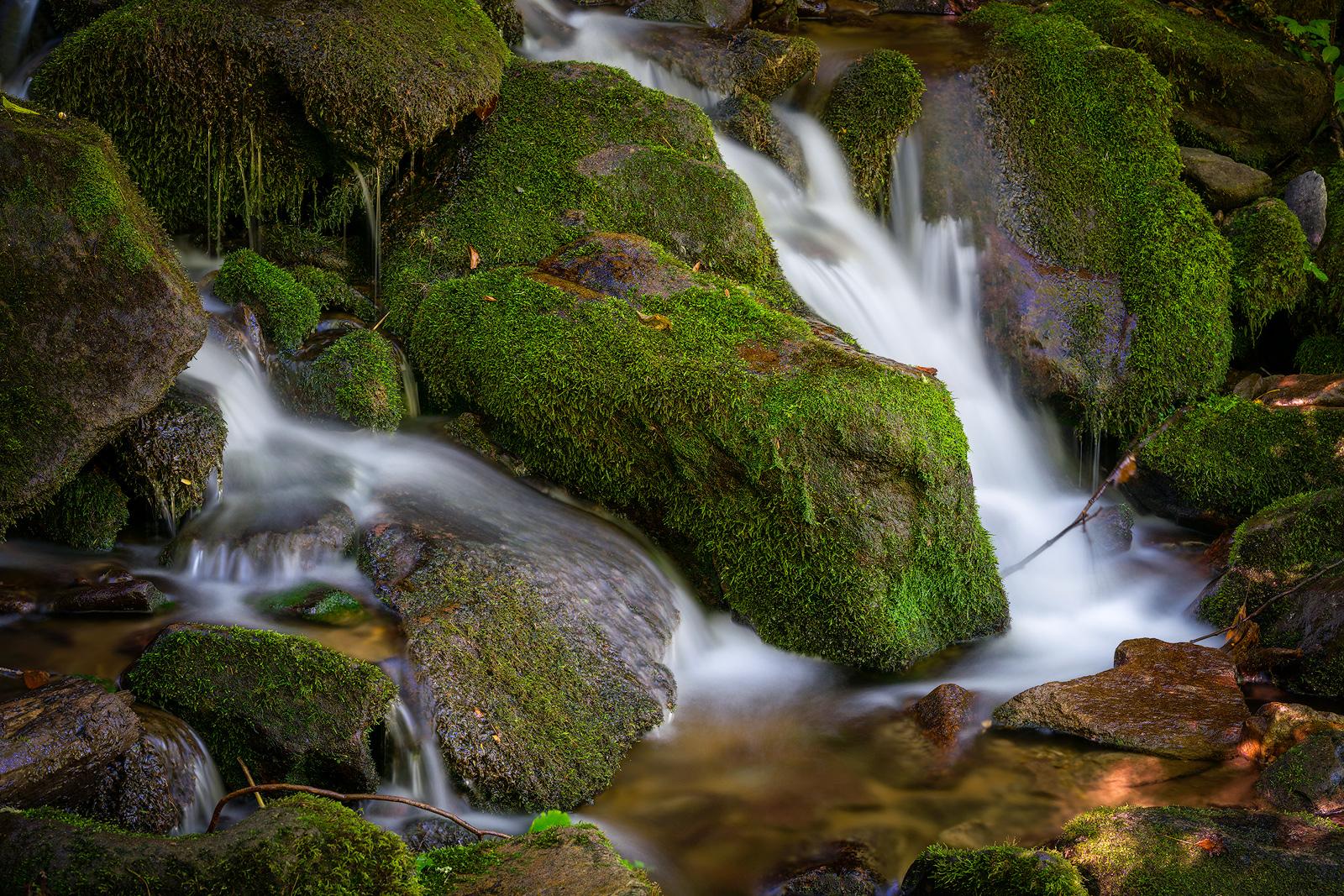 IMAGE: https://photos.smugmug.com/photos/i-5vV68XT/2/dc48e4a7/O/i-5vV68XT.jpg