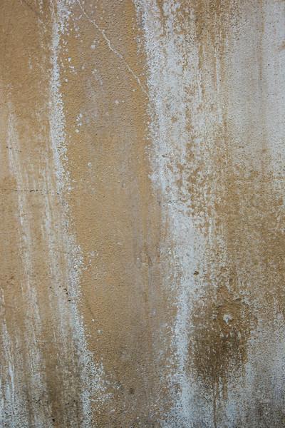 64-Lindsay-Adler-Photography-Firenze-Textures-COLOR.jpg