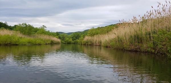 Mill Pond, Windsor VT, June 2, 2020