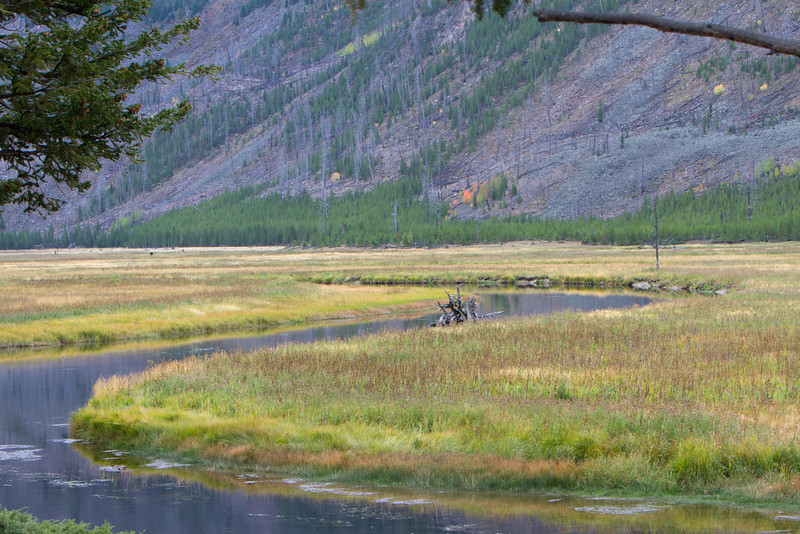 02_Yellowstone National Park_Montana_Wyoming-3.jpg