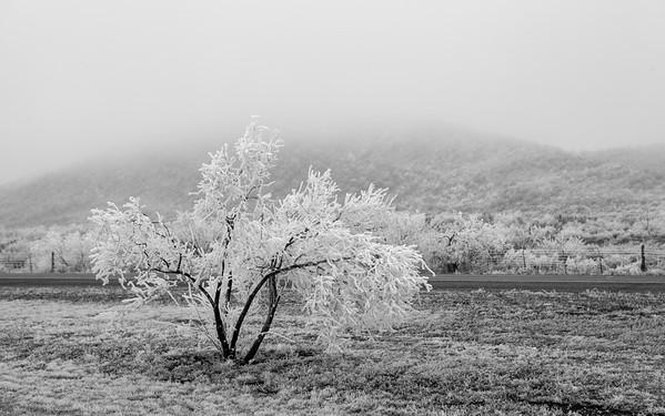 Landscape Moments