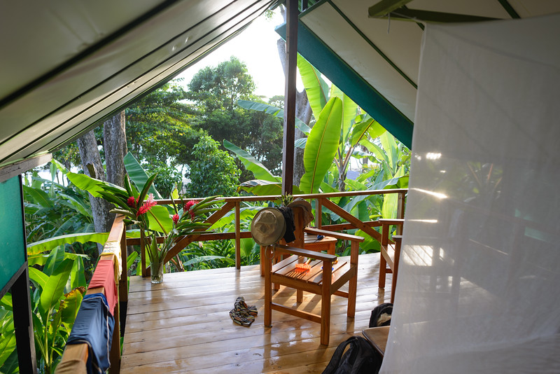 Our open air accommodation - living in the jungle!