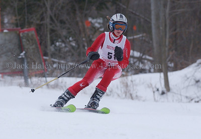 2008 Section V Girls Alpine Skiing Championships