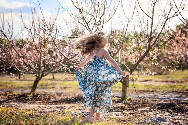 Peach blossoms Feb 2021 - Lopez