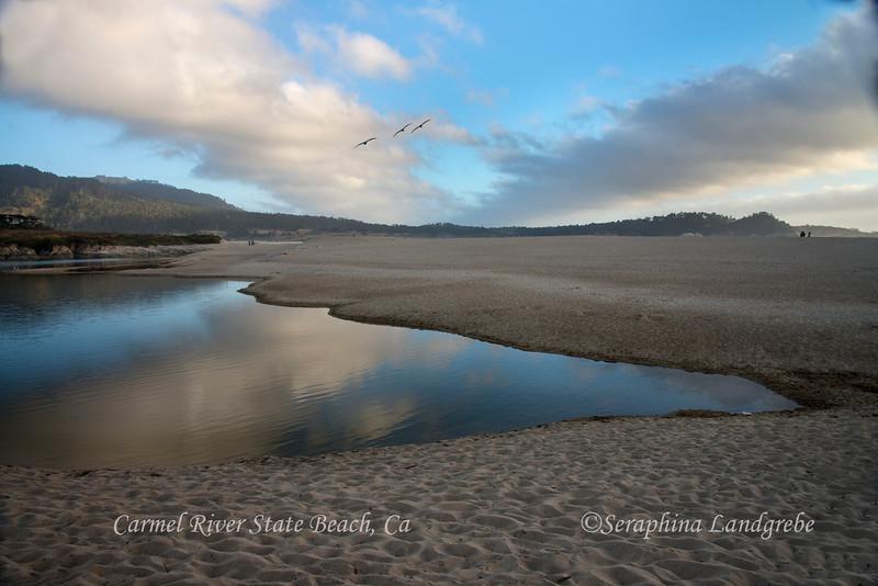 _DSC4842Carmel River.jpg